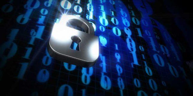 Safe and Secure Website Backups